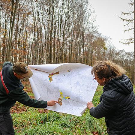 teko news waldspende 450x450 - TEKO spendet einen Wald